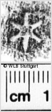 Image Description for https://www.wlb-stuttgart.de/kyriss/images/s0021408.jpg