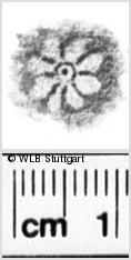 Image Description for https://www.wlb-stuttgart.de/kyriss/images/s0021410.jpg