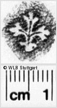 Image Description for https://www.wlb-stuttgart.de/kyriss/images/s0022429.jpg