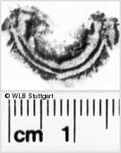 Image Description for https://www.wlb-stuttgart.de/kyriss/images/s0022561.jpg