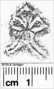 Image Description for https://www.wlb-stuttgart.de/kyriss/images/s0026216.jpg