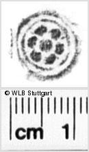 Image Description for https://www.wlb-stuttgart.de/kyriss/images/s0027622.jpg