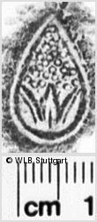 Image Description for https://www.wlb-stuttgart.de/kyriss/images/s0031420.jpg