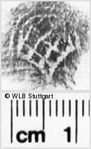 Image Description for https://www.wlb-stuttgart.de/kyriss/images/s0032915.jpg