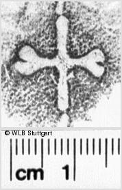 Image Description for https://www.wlb-stuttgart.de/kyriss/images/s0034908.jpg