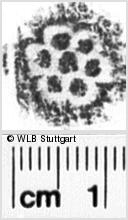 Image Description for https://www.wlb-stuttgart.de/kyriss/images/s0035007.jpg