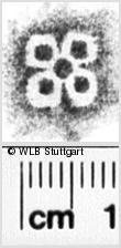 Image Description for https://www.wlb-stuttgart.de/kyriss/images/s0036909.jpg