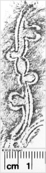 Image Description for https://www.wlb-stuttgart.de/kyriss/images/s0037211.jpg