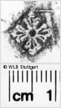 Image Description for https://www.wlb-stuttgart.de/kyriss/images/s0043807.jpg