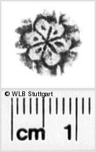 Image Description for https://www.wlb-stuttgart.de/kyriss/images/s0044741.jpg
