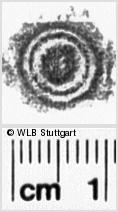 Image Description for https://www.wlb-stuttgart.de/kyriss/images/s0045635.jpg