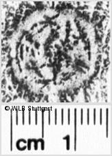 Image Description for https://www.wlb-stuttgart.de/kyriss/images/s0046521.jpg