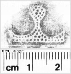 Image Description for https://www.wlb-stuttgart.de/kyriss/images/s0050811.jpg