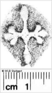 Image Description for https://www.wlb-stuttgart.de/kyriss/images/s0051175.jpg
