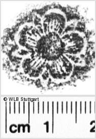 Image Description for https://www.wlb-stuttgart.de/kyriss/images/s0052208.jpg
