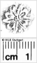 Image Description for https://www.wlb-stuttgart.de/kyriss/images/s0053229.jpg