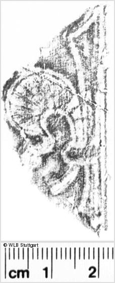 Image Description for https://www.wlb-stuttgart.de/kyriss/images/s0053353.jpg