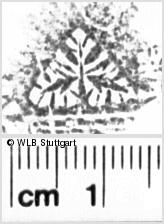 Image Description for https://www.wlb-stuttgart.de/kyriss/images/s0054516.jpg