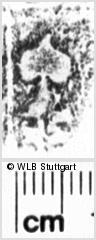 Image Description for https://www.wlb-stuttgart.de/kyriss/images/s0055342.jpg