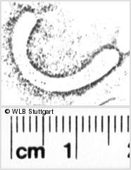 Image Description for https://www.wlb-stuttgart.de/kyriss/images/s0056133.jpg