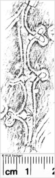 Image Description for https://www.wlb-stuttgart.de/kyriss/images/s0056304.jpg