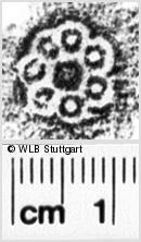 Image Description for https://www.wlb-stuttgart.de/kyriss/images/s0062804.jpg