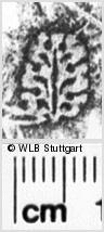 Image Description for https://www.wlb-stuttgart.de/kyriss/images/s0063509.jpg