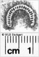 Image Description for https://www.wlb-stuttgart.de/kyriss/images/s0072019.jpg