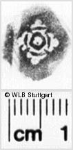 Image Description for https://www.wlb-stuttgart.de/kyriss/images/s0072615.jpg