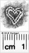 Image Description for https://www.wlb-stuttgart.de/kyriss/images/s0081204.jpg