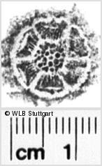 Image Description for https://www.wlb-stuttgart.de/kyriss/images/s0082309.jpg