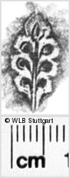 Image Description for https://www.wlb-stuttgart.de/kyriss/images/s0082912.jpg
