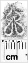 Image Description for https://www.wlb-stuttgart.de/kyriss/images/s0084910.jpg