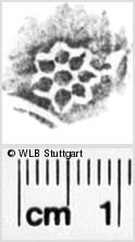 Image Description for https://www.wlb-stuttgart.de/kyriss/images/s0091208.jpg