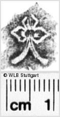 Image Description for https://www.wlb-stuttgart.de/kyriss/images/s0102008.jpg