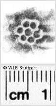 Image Description for https://www.wlb-stuttgart.de/kyriss/images/s0102207.jpg