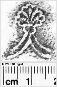 Image Description for https://www.wlb-stuttgart.de/kyriss/images/s0103118.jpg