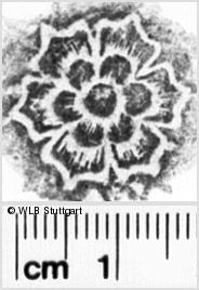 Image Description for https://www.wlb-stuttgart.de/kyriss/images/s0103602.jpg