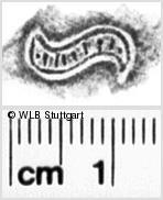 Image Description for https://www.wlb-stuttgart.de/kyriss/images/s0110720.jpg