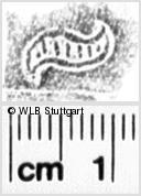 Image Description for https://www.wlb-stuttgart.de/kyriss/images/s0110722.jpg