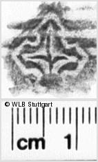 Image Description for https://www.wlb-stuttgart.de/kyriss/images/s0111421.jpg