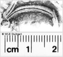 Image Description for https://www.wlb-stuttgart.de/kyriss/images/s0111611.jpg