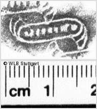 Image Description for https://www.wlb-stuttgart.de/kyriss/images/s0112523.jpg