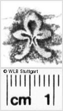 Image Description for https://www.wlb-stuttgart.de/kyriss/images/s0112907.jpg