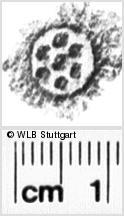 Image Description for https://www.wlb-stuttgart.de/kyriss/images/s0122011.jpg