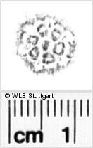 Image Description for https://www.wlb-stuttgart.de/kyriss/images/s0131011.jpg