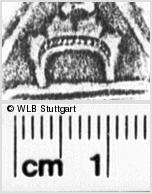 Image Description for https://www.wlb-stuttgart.de/kyriss/images/s0132215.jpg