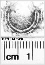 Image Description for https://www.wlb-stuttgart.de/kyriss/images/s0133411.jpg