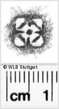 Image Description for https://www.wlb-stuttgart.de/kyriss/images/s0133415.jpg