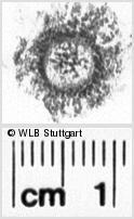 Image Description for https://www.wlb-stuttgart.de/kyriss/images/s0133619.jpg